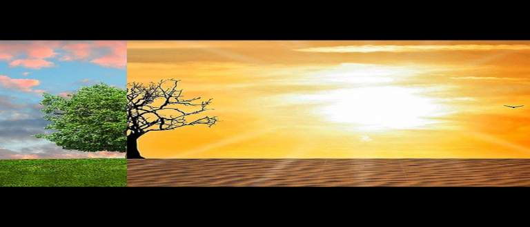 ILB Web TV : les leçons à tirer de la pandémie pour le réchauffement climatique